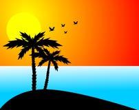 Palmen, Sonne u. Ozean Stockbild