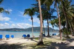 Palmen, strand en ligstoelen Stock Afbeeldingen