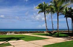 Palmen, Strandstühle und Hängematte durch den Ozean Lizenzfreie Stockbilder