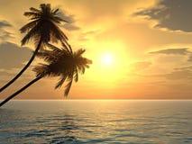 Palmen sunset2 royalty-vrije illustratie