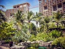 Palmen tegen de achtergrond van de hoogste hotels in zonnige dag in Thailand stock afbeeldingen