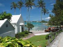 Palmen und 2 Häuser Stockfoto