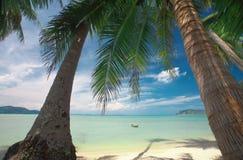 Palmen und Boot Lizenzfreies Stockbild
