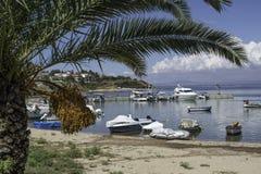 Palmen und Boote Stockfotos