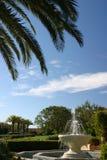 Palmen und Brunnen Stockfotos