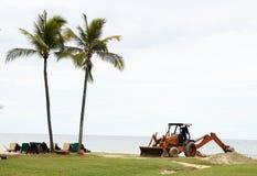 Palmen und ein Exkavator Stockbilder