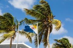 Palmen und Flagge von Bonaire lizenzfreies stockfoto