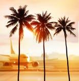 Palmen und Flughafen stockbilder