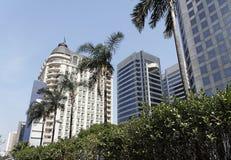 Palmen und klassisches Gebäude Lizenzfreies Stockfoto