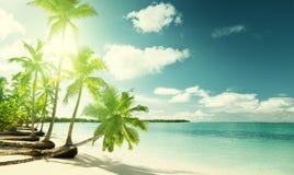 Palmen und Meer Lizenzfreies Stockfoto