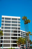 Palmen und moderne Architektur Stockbilder