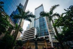 Palmen und moderne Wolkenkratzer bei Sheung fahl, in Hong Kong, H Stockbild