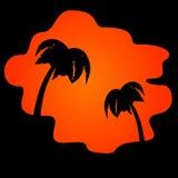 Palmen und orange Sonnenuntergang Stockfotografie