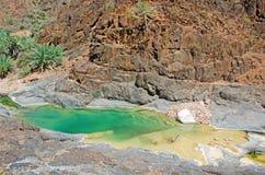 Palmen und rote Felsen in der Oase von Dirhur, natürliches Pool, Socotra-Insel, der Jemen Stockbild