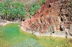 Palmen und rote Felsen in der Oase von Dirhur, natürliches Pool, Socotra-Insel, der Jemen Lizenzfreies Stockfoto