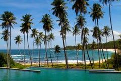 Palmen und sandiger Strand Stockfotos