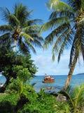 Palmen und Schiffswrack Stockfoto