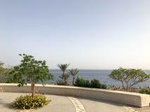 Palmen und tropische grüne Bäume in der Natur und im Steinfechten, Zaun, Geländer auf einem Bergabhang in ein Seetropischen Erhol stockbild