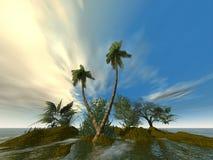 Palmen van grond Stock Fotografie