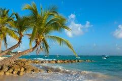 Palmen verbogen auf das Ufer des Ozeans bei Sonnenuntergang Worthing-Strand in Barbados stockfotos