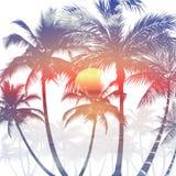 Palmen in voorgrond op een overzees landschap bij zonsondergang vector illustratie