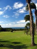 Palmen, Weiden, Oceaan en Hemel stock foto's