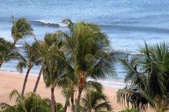 Palmen-Wellen und Sand lizenzfreie stockfotografie