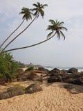 Palmen, zand en steenkust door de oceaan stock foto