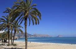 Palmen zandige Strand en Middellandse Zee en stad van Altea Spanje Royalty-vrije Stock Afbeeldingen