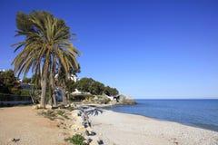 Palmen zandige Strand en Middellandse Zee en stad van Altea Spanje Royalty-vrije Stock Fotografie