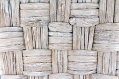 Palmenbarke Stockbild