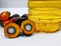 Palmenfrüchte und Palmöl, eine Frucht wird geschnitten, um seinen Kern zu zeigen Lizenzfreie Stockbilder