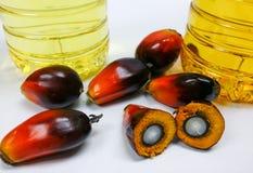 Palmenfrüchte und Palmöl, eine Frucht wird geschnitten, um seinen Kern zu zeigen Lizenzfreies Stockbild