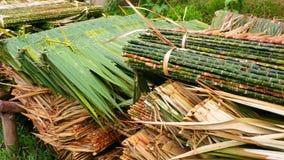 Palmenfreie räume für Hausdach stockfoto