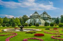 Palmengarten Schobrunn庭院维也纳 免版税图库摄影