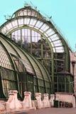 Palmenhaus Lizenzfreies Stockbild