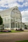 Palmenhaus Stockfoto