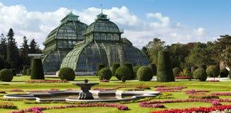 Palmenhaus am britischen Garten von Schönbrunn Stockfotografie