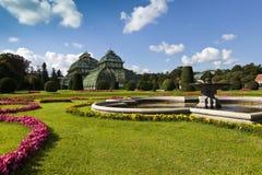 Palmenhaus am britischen Garten von Schönbrunn Stockbilder
