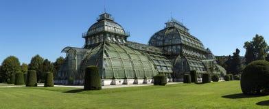 Palmenhaus-Pavillongewächshaus im Garten von Palast Schloss Schonbrunn, Wien, Österreich Schonbr Stockfotos