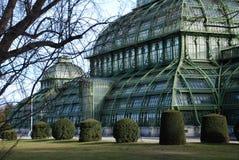 Palmenhaus Schönbrunn Stockfoto