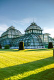 Palmenhaus in Schonbrunn gardens Royalty Free Stock Photos