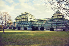 Palmenhaus Wien, Österrike Arkivbild