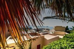 Palmenküste mit Hotelgebäuden Lizenzfreie Stockbilder