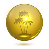 Palmenlandschaft Stockfotos