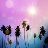 Palmenlandschap Royalty-vrije Stock Foto's