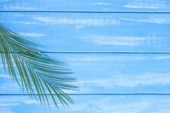 Palmenniederlassung auf einem blauen hölzernen Hintergrund Freier Platz für Text Weinlesehintergrund Ebenenlage, Kopienraum stockfotos