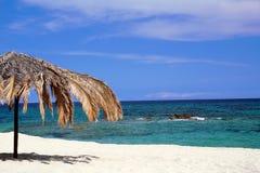 Palmenregenschirm auf dem Strand Lizenzfreies Stockbild