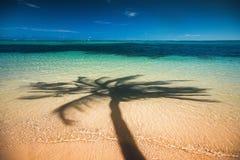 Palmenschaduw op het tropische strand Punta Cana, Dominicaans aangaande royalty-vrije stock afbeeldingen