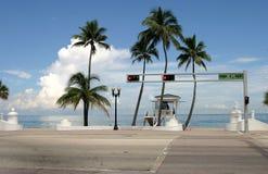 Palmenschatten stockfotografie